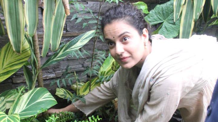 कंगना रनौत ने बांद्रा में अपने ऑफ़िस के बाहर पौधे लगाए